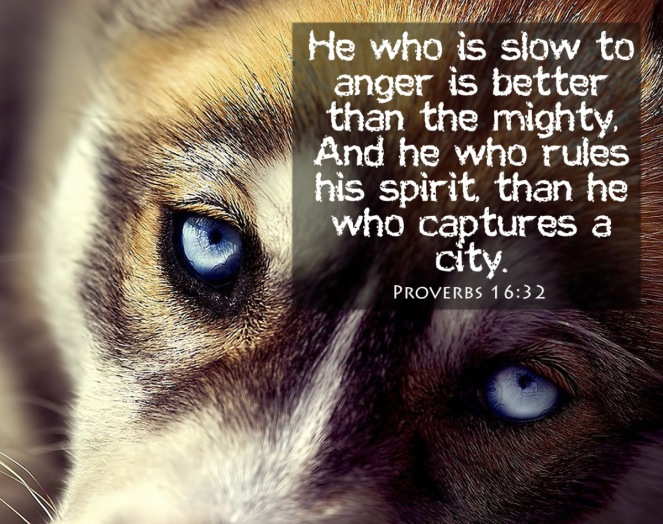 proverbs-16-32-he-who-is-slow-to-anger-is-better-than-the-mighty-and-he-who-rules-his-spirit-than-he-who-captures-a-city
